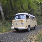 Westy road trip dans le 64 en forêt